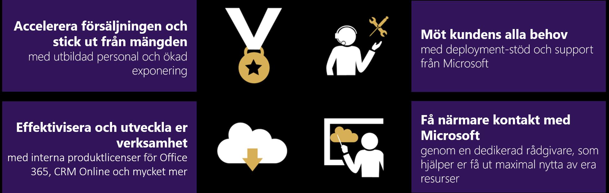Gold Highlights