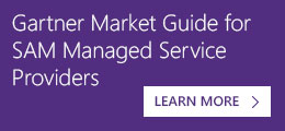 Gartner Market Guide for SAM Managed Service Providers
